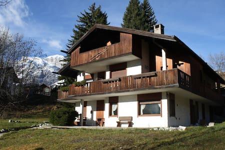 Chalet immerso nel verde-2 passi da centro Cortina - Cortina d'Ampezzo
