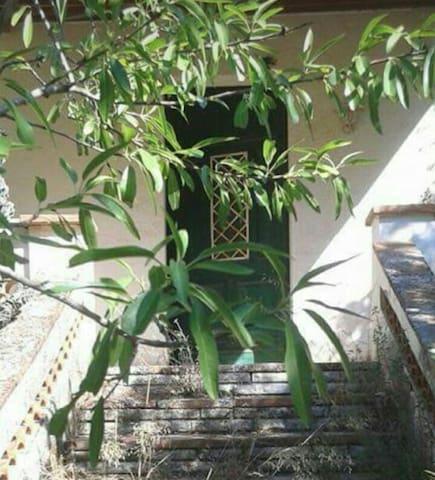 NOU! Casa/jardí a Camp de Tarragona -    PUIGPELAT - House