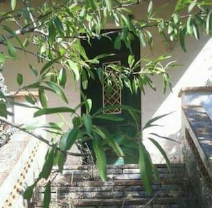 NOU! Casa/jardí a Camp de Tarragona -    PUIGPELAT - Dom