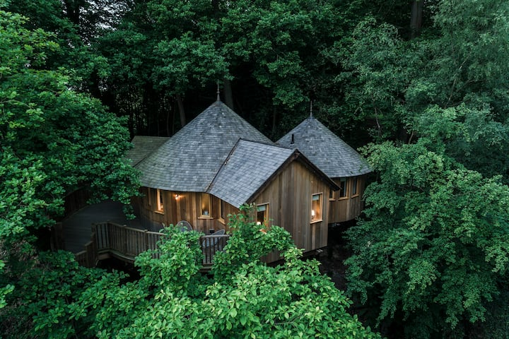 The Buzzardry, Luxury Woodland Treehouse Retreat