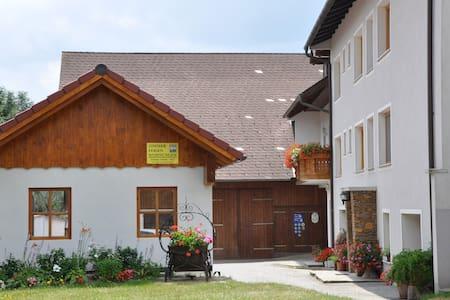 Ferienwohnung  am Bauernhof - Bucklige Welt - - Maierhöfen
