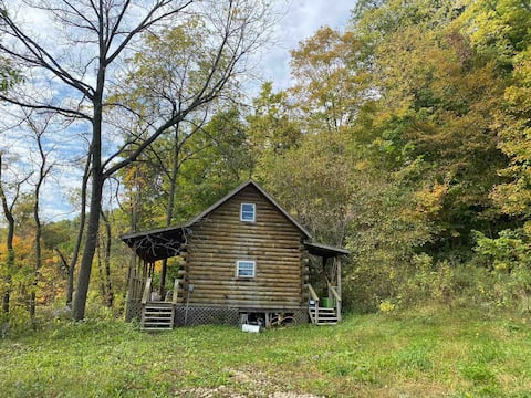 Cabin Experience  with animals, creek, hikes, pond