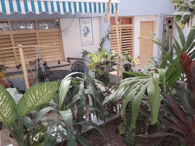 ★ El Leon Azul B&B  ★ Private room Habana Vieja