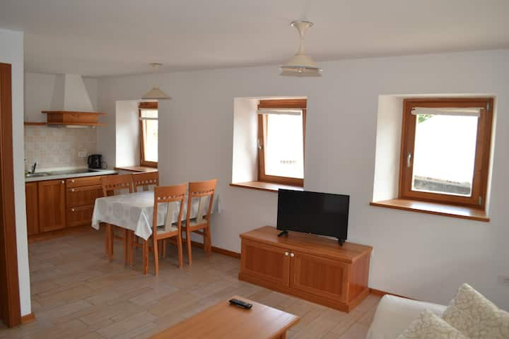 Beautiful apt near the Triglav National Park