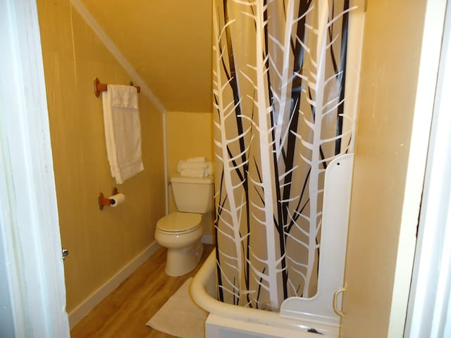 It is a small bathroom with a slanted ceiling. Kinda quirky but functional.