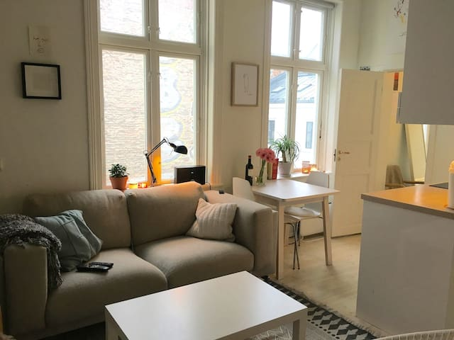 Modern, comfortable apt in the heart of Oslo!