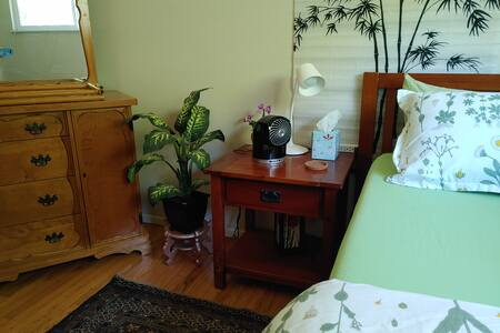 Bamboo Room: Important Travel, pet care available