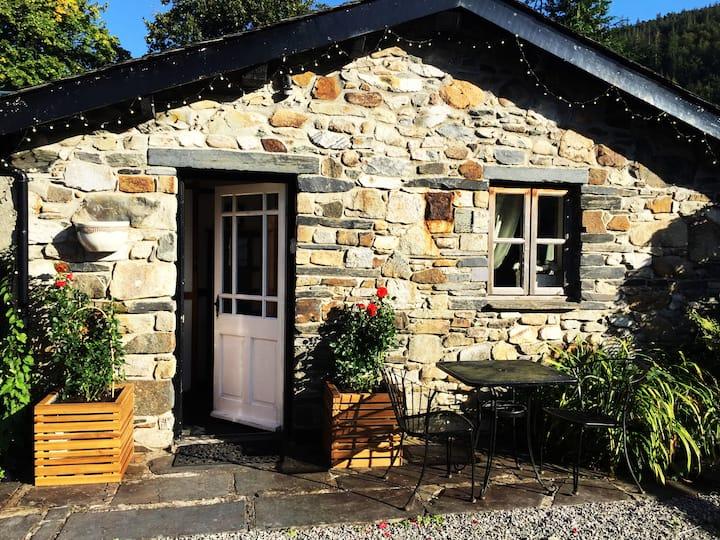 Dolweunydd B&B Hotel / The Cottage