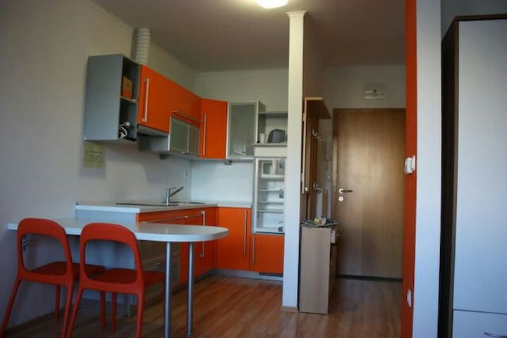 Small cosy apartment near centre - Maribor - Byt