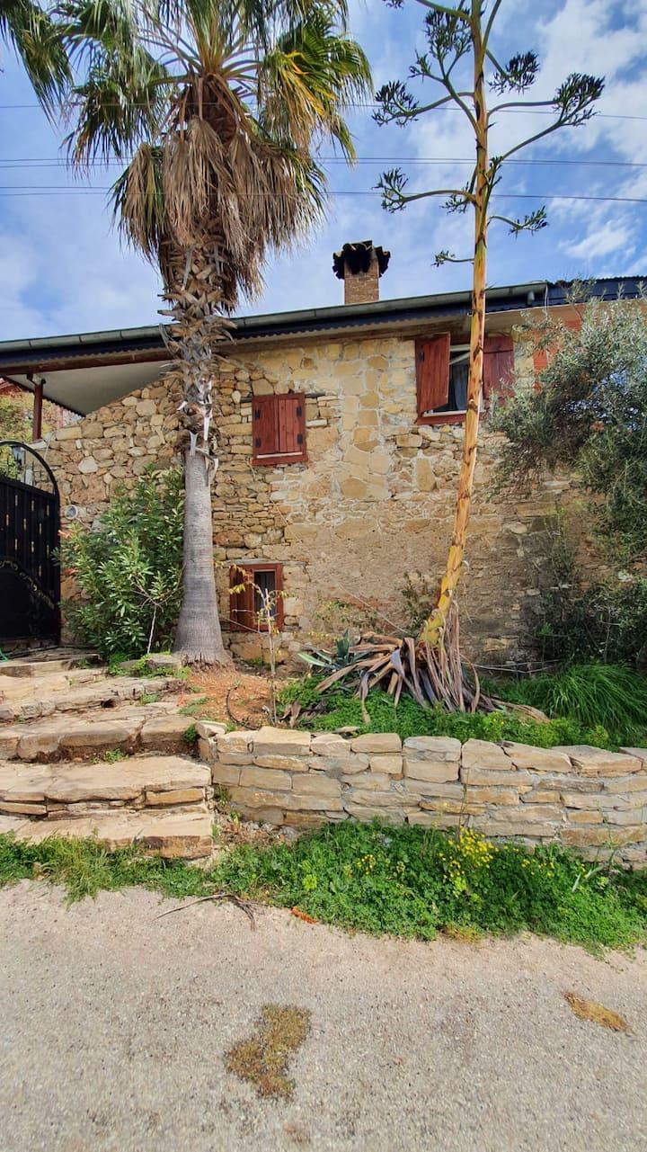 side antik twin villa 2+1