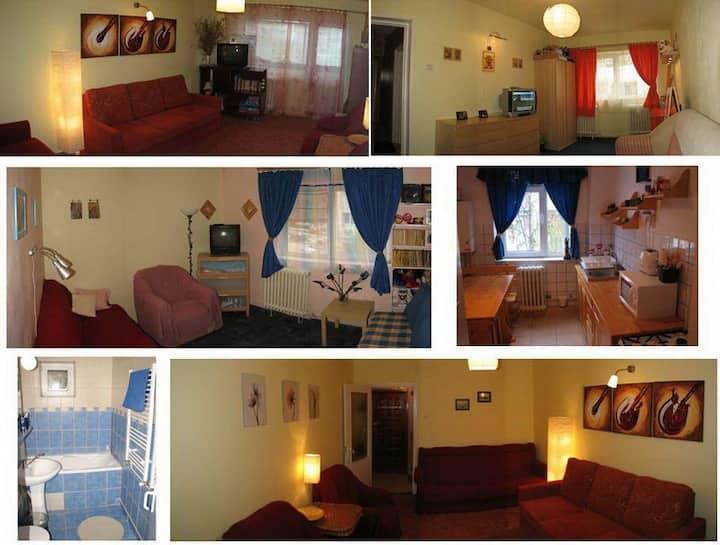 Beautiful Apartment in Azuga Ski Resort