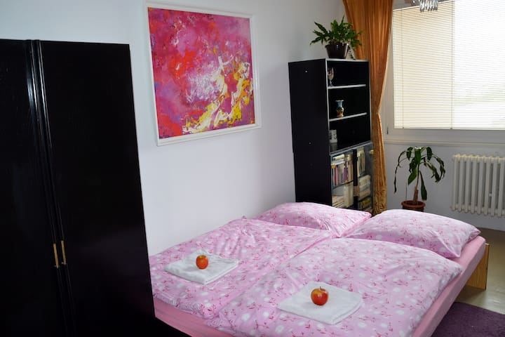 SWEET ROOM,COMFY BED,10MIN AIRPORT,15MIN CENTER - Praag - Appartement