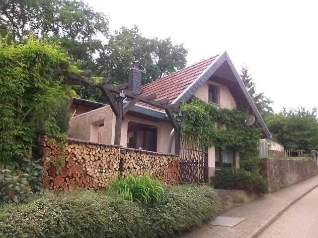 Ferienhäuschen im Grünen - Sangerhausen - House