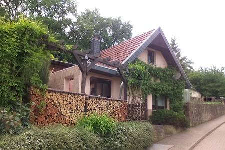 Ferienhäuschen im Grünen - Sangerhausen - Haus