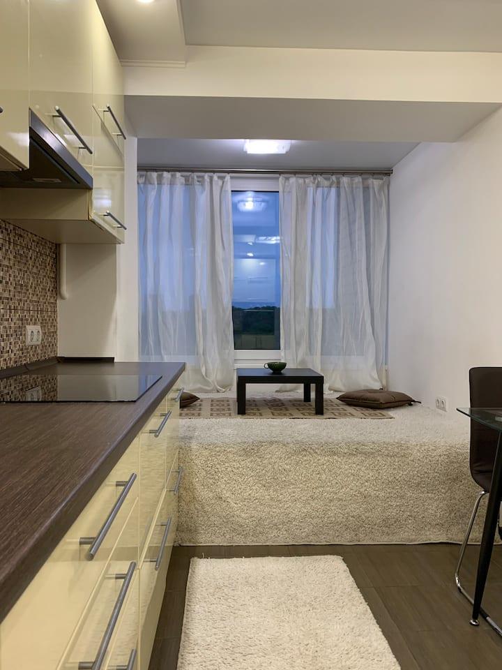 Современные апартаменты в Киеве