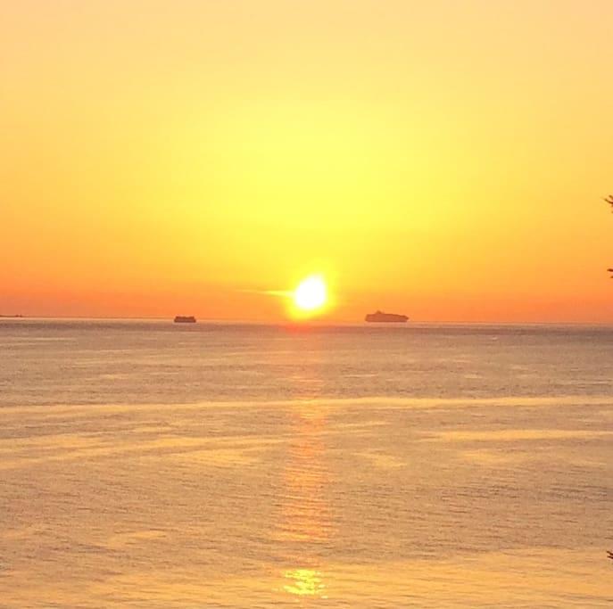 Big Ships, Ferries, cruise ships, sailboats, Eagles, see lions, salmon, deer.....