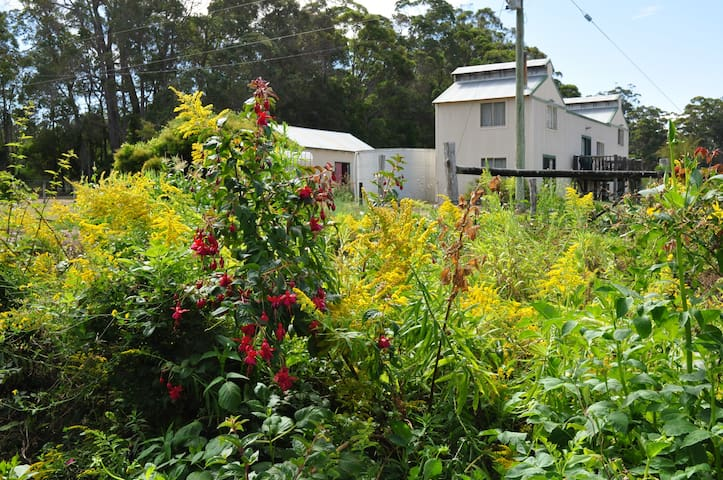Your own village in the magnificent karri forest