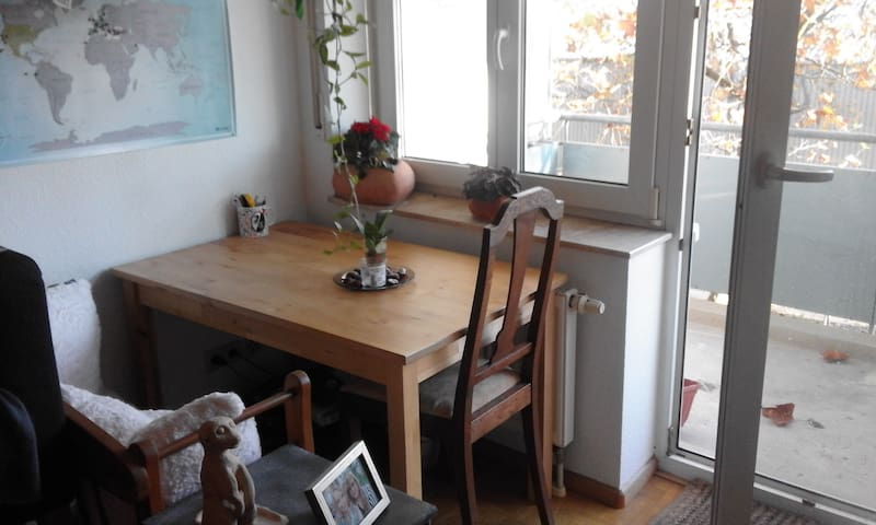Gemütliche 1-Zimmerwohnung nahe zum Stadtzentrum - Freiburg im Breisgau