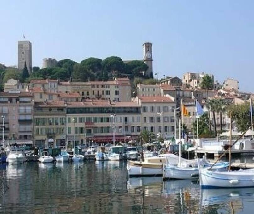Le suquet old port area.