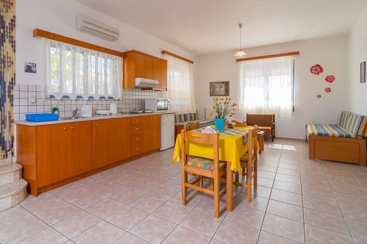 Roula Apartments Spacious & Comfort