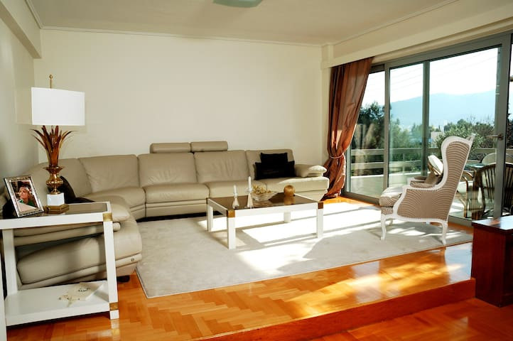 Spacious 3bd pristine apt. with full park view - Psichiko - Apartemen