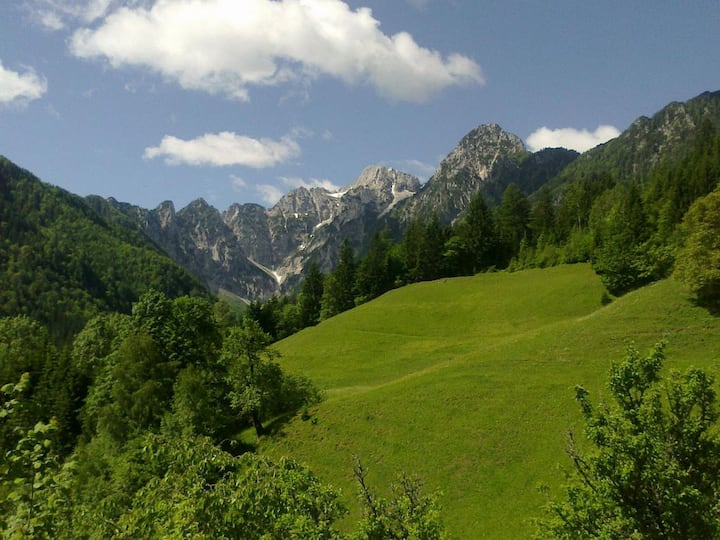 Room in Logarska Valley with a mountin view