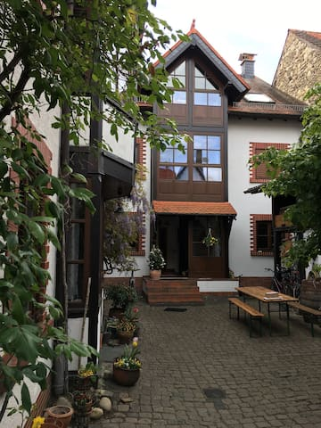 Stadtnahe 1-Zimmerwohnung im Grünen - Mainz - Pis