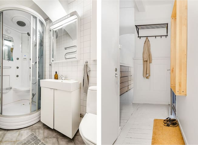 Bathroom and hallway.  Sauna steam shower with music and massage function.