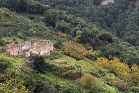 Wundergarten Forest Eco Lodge, wildlife in Sicily - Gratteri