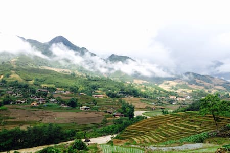 Sapa Rice Field View - tt. Sa Pa