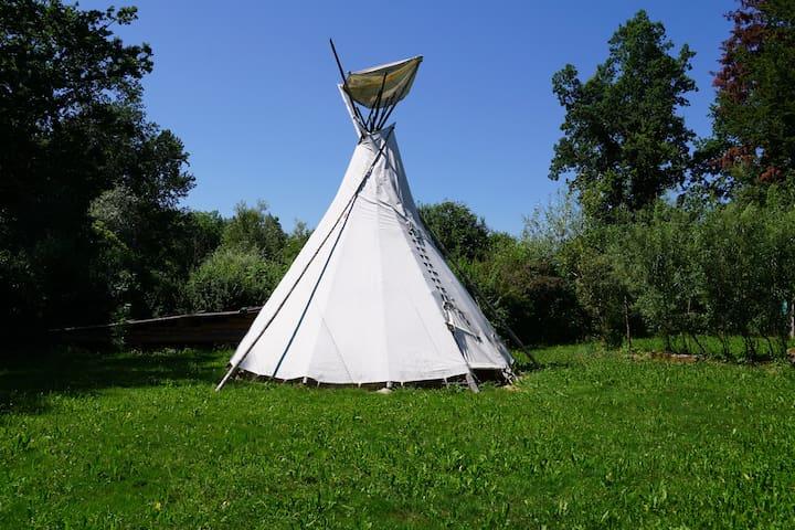6m Tipi und Naturplatz auf dem Demeter-Bauernhof