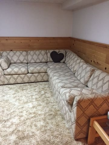 Private basement with study Space - 伊斯蘭提(Ypsilanti) - 獨棟