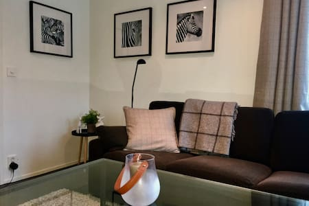 Hemsedal centre, cozy and modern appartment - Hemsedal