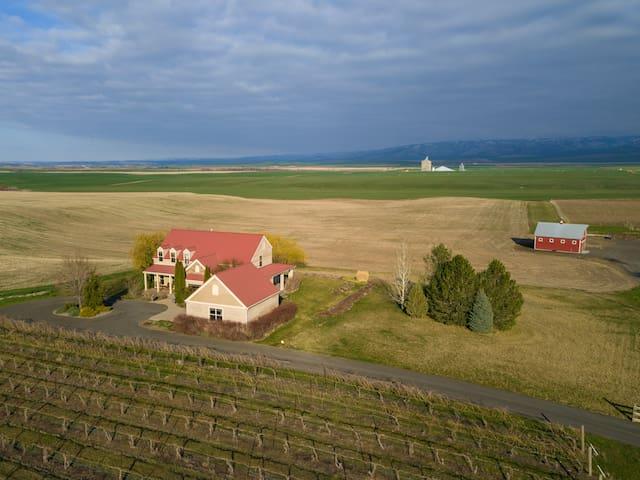 Luxury in the Vineyard - Stunning Views