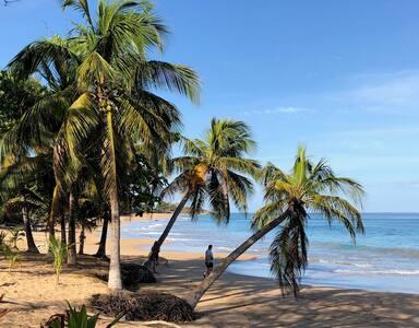 Coco Mango Apt. B  Carpe diem  à 3 mn de la plage