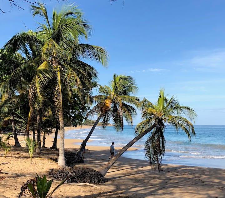 Coco Mango Apt. B  Carpe diem  3 mn de la plage