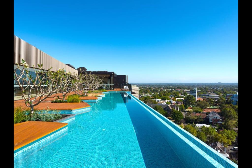Roof top pool available for guest use