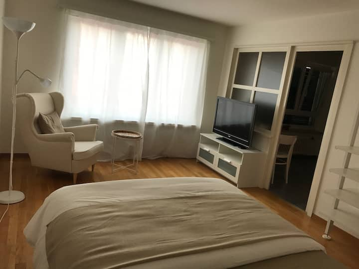 Perfect apartment in the center of Zurich