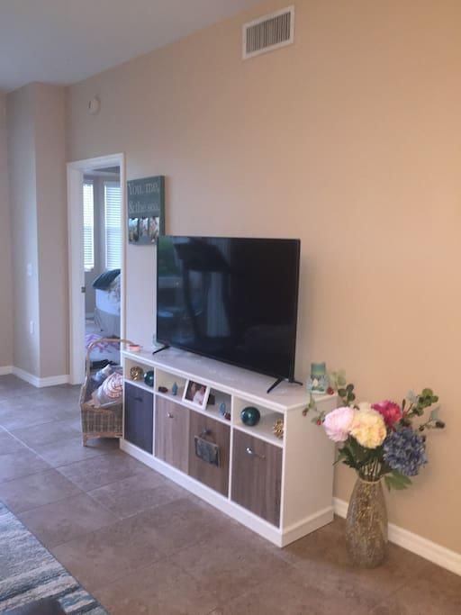 New Flatscreen TV