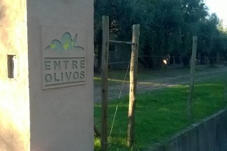 Cabañas Entre Olivos