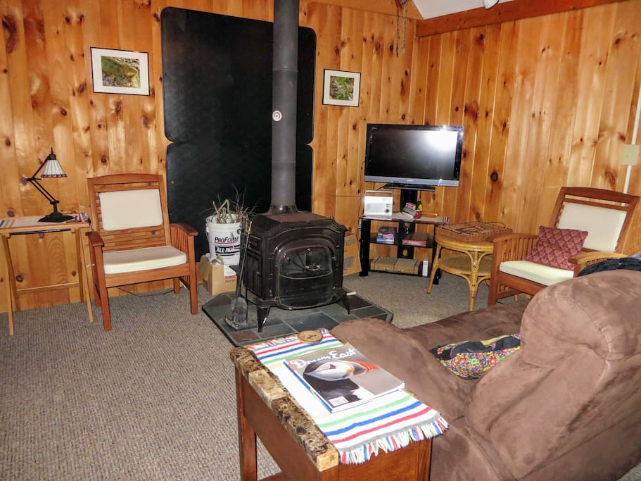 Living Room with TV and wood stove