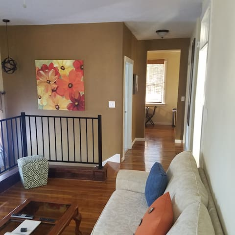 Uptown Delight! Close to Downtown Hot Springs!