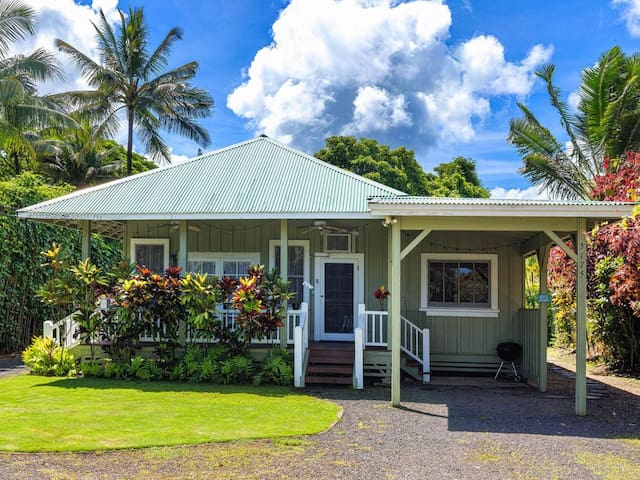 Kuuipo Hale, short walk to Hanalei Bay! TVNC #1159