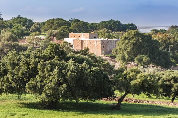 Old charm farm among Argan trees