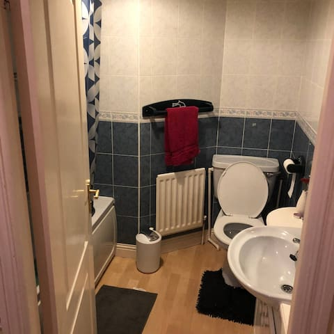 Single bedroom in large house close to town