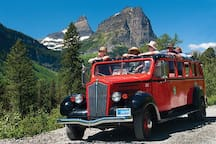 Red Bus Tours in Glacier