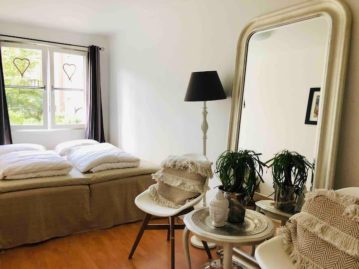 Cozy room in a cozy flat in centrum of Oslo