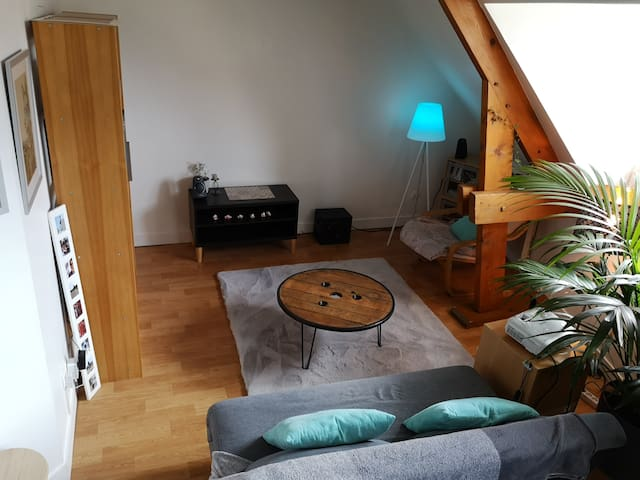 Room in a comfy flat in the very city center