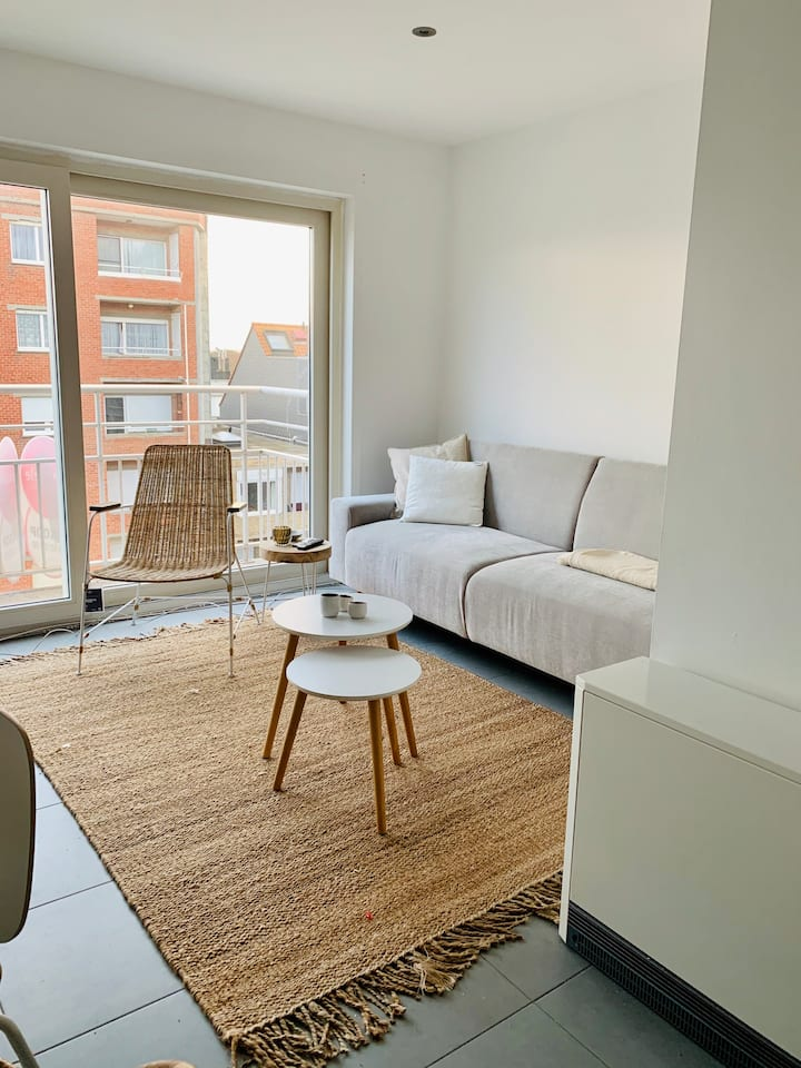 Lichtrijk appartement op 100m van het strand!