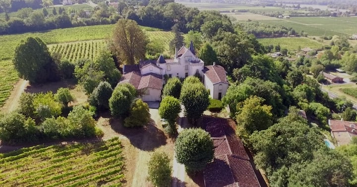 Château Bellevue Vignoble Bio Quinsac